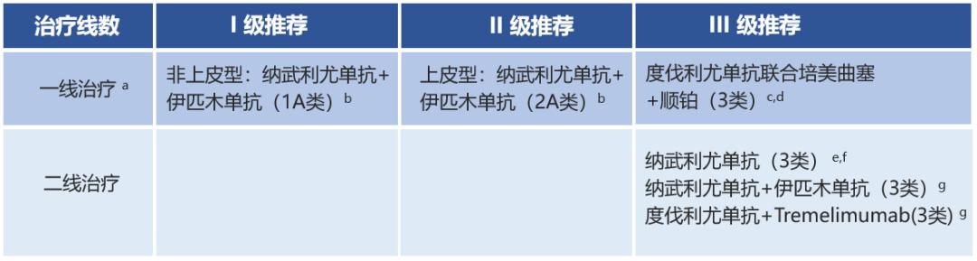 章必成教授:胸膜间皮瘤首次列入CSCO ICIs指南,双免疫治疗方案获推荐!