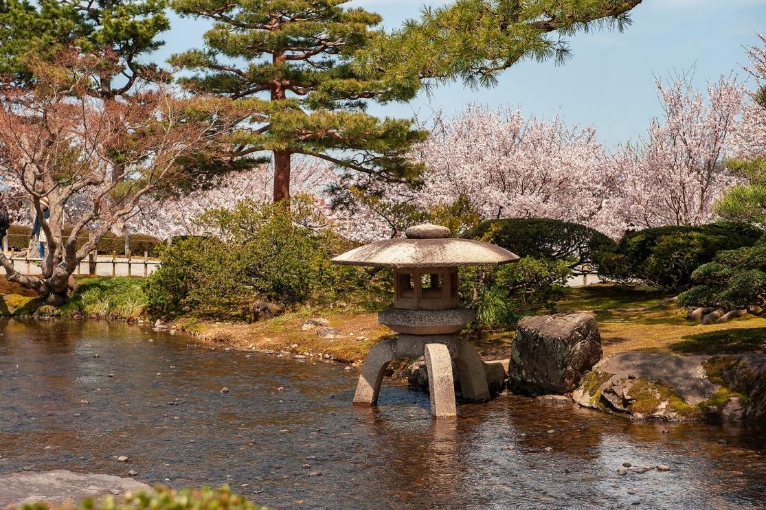 水旁边有树 描述已自动生成